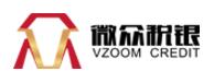 Wei Zhong Shui Yin VZoom