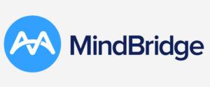 Mindbridge AI
