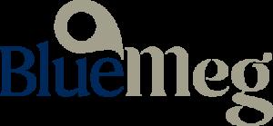 Bluemeg blockchain startup