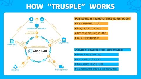 How_Trusple_Works